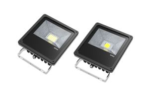 20W IP65 Outdoor LED Floodlight Lamp (TG20)