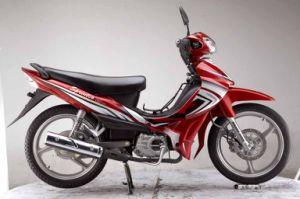 Cub Motorcycle / Dirt Bike (SP125-7)