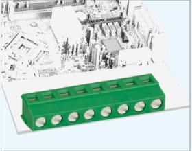 PCB Screw Electrical Terminal Block_5.0/5.08mm_GS009r 300V