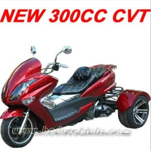 New ATV 300CC Trike (MC-392) pictures & photos