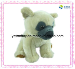 White Dog Soft Stuffed Toy pictures & photos