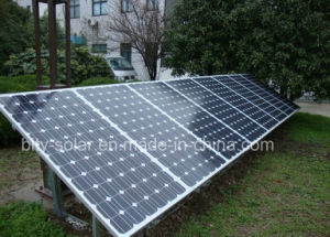 300W Mono Solar Panel with 72PCS pictures & photos