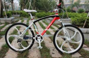 MTB Bike (WT-2654)