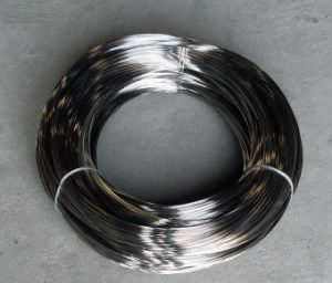 Stainless Steel Wire for Mesh Belt (dg-01)