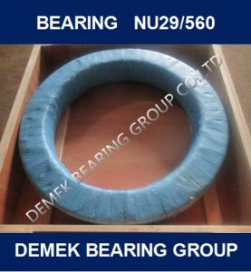 Big Cylindrical Roller Bearing Nu29/560 with Brass Cage pictures & photos