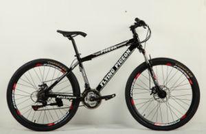 Battle Horse 21-SP Mountain Bike (FP-MTB-A052) pictures & photos