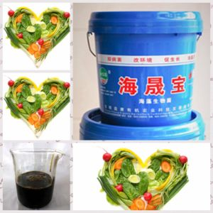 Seaweed Extract liquid Fertilizer for fruit and flower