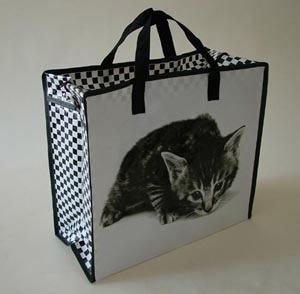 2014 Non-Woven Bag for Shopping pictures & photos