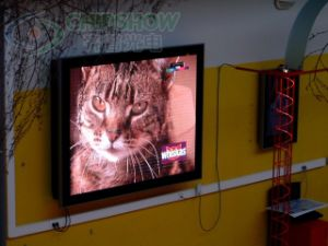 Chipshow P10 SMD Full Color Large LED Display Screen pictures & photos