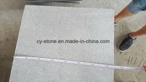 Flamed G654 Padang Dark Small Slab Granite for Flooring/Wall/Countertops