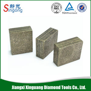 Professional Manfacturer Diamond Segment pictures & photos