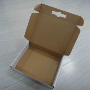 Color Printed Corrugated Paper Box with Plastic Handle pictures & photos