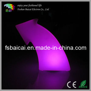 LED Garden Decoration Lighting with Remote Controller Bcd-346L