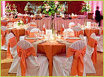 Banquet Chair Cover & Satin Sash
