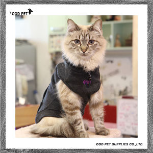 Cat Supplies of Cat Clothes Cat Hoodie (SPH6013) pictures & photos