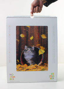 Super Quality Hot-Sale 3D Table Desk Calendar pictures & photos
