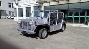 110 Km/H Max Speed Fuel Engine Tourist Coach Sightseeing Car with 4 Seats pictures & photos