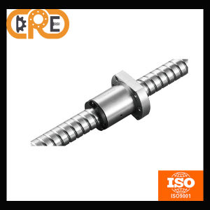 Chrome Steel and Manufacturer for High Precision Machine Tools Dfu2004 Ball Screw pictures & photos