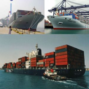 Shipping Company/ Shipping Agent/Shipping Rates/Shipping Cost From China to Beira, Maputo Mozambique pictures & photos