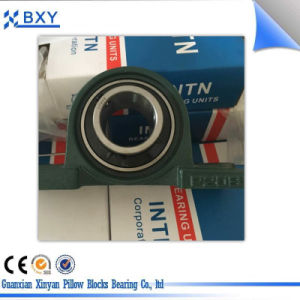 All Kinds of Pillow Block Bearing pictures & photos
