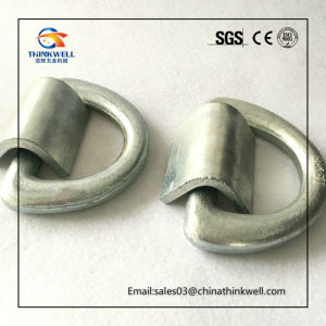 Forged Lashing D-Ring with Bracket for Container pictures & photos