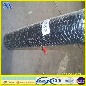 High Quality Cheap Hexagonal Wire Mesh (XA-HM416) pictures & photos
