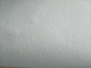 SGS Gold Certification Artificial White Sheepskin Shoe Leather PVC Leather pictures & photos