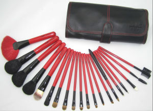 Professional Makeup Brush Set (ts-01)