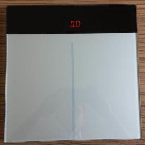 Pounds Scale (A9B)