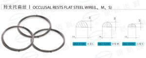 Stainless Steel Wire Flat pictures & photos