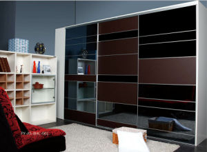 Modern Style Wardrobe Sliding Door (PY-A5-BHC-001) pictures & photos