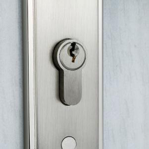 High Security Mortise Door Lock Entrance Door Hardware Zinc Alloy Handle Lock with Plate pictures & photos