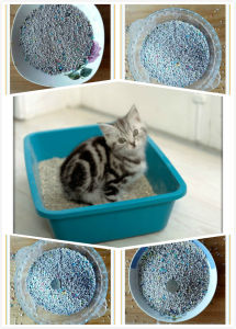 Pet Product Production Line Cat Litter Product