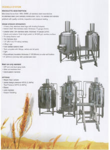 Home Brew Kit Stainless 100L Conical Fermenter (ACE-FJG-E8) pictures & photos