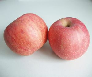 Best Quality Fresh FUJI Apple From Shandong Origin pictures & photos