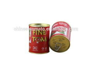Double Concentrated Canned Tomato Paste of Gino Brand for Italy Market pictures & photos