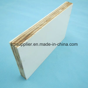 Good Quality FRP Plywood Panel for Door Panel for Truck Body pictures & photos