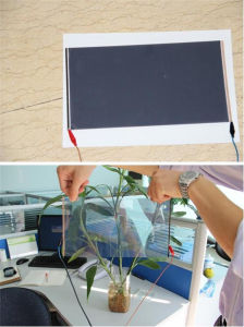 High Transparency Attractive Grey Self Adhesive Film for Car Windows pictures & photos