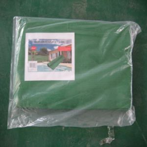 Outdoor Greenhouse Plastic Net for Agriculture pictures & photos