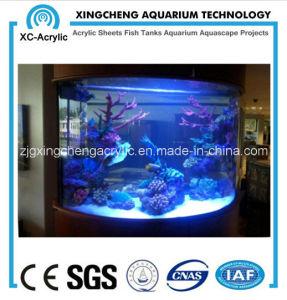 Customizable Cylindrical Aquarium pictures & photos