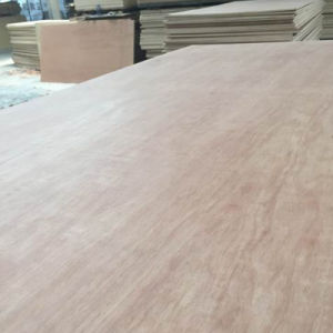 Bintangor Face Commercial Plywood Interior Use pictures & photos