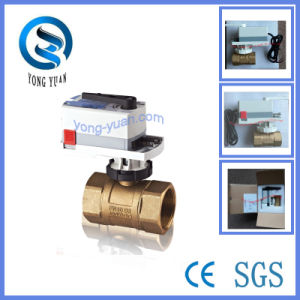 HVAC 3-Way Brass Motorized Ball Valve (BS-878.50-3) pictures & photos
