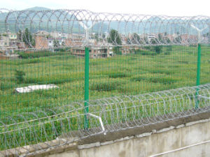 High Security and Practical PVC Coated Wire Mesh Fence