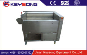 Water Spray Fruit and Vegetable Washing Brush Machine pictures & photos