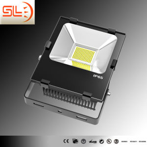 COB 60W LED Floodlight with Ce pictures & photos