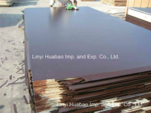 Finger Joint Plywood for Dubai Markets pictures & photos