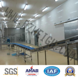 Automatic Flat Conveyor Psj1600 Food Machine pictures & photos