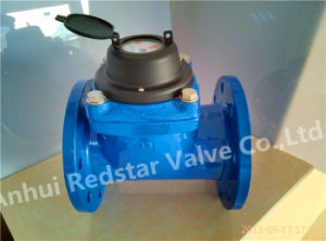 Removable Honrizontal Woltman Dry Type Water Meter pictures & photos