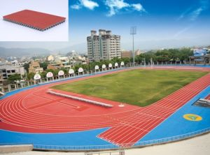Iaaf Certified Prefabricated Rubber Athletic Running Track, Runway Flooring, Running Flooring