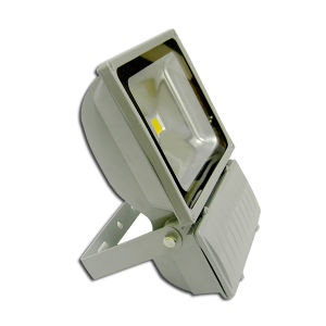 Stadium 100W Outdoor LED Flood Lighting pictures & photos